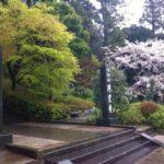 「坐禅体験@円覚寺」〜300円で触れられる日本の文化