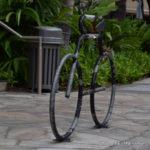 ハワイ:ホノルル】海外って自転車に優しい